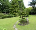 Japanese Gardens - Irish National Stud