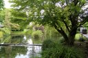 Japanese Gardens - Irish National Stud